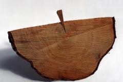 Inserting, 1994, wood, 35 x 45 x 13 cm